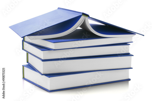 Fotografie, Obraz  Blue Hard Cover Books