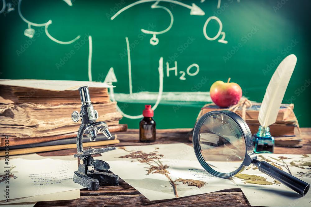 Fototapeta Old biology lesson in classroom