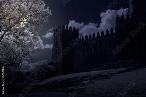 Foto op Plexiglas Kasteel Medieval castle in a full moon night