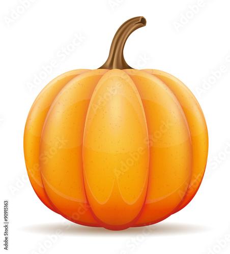 Fotografie, Obraz  pumpkin vector illustration