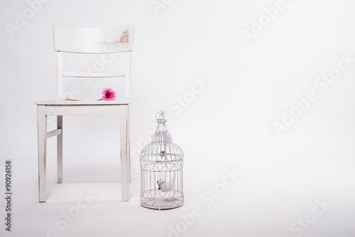 Foto-Plissee - shabby Stuhl mit Käfig