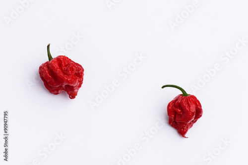 Two Carolina Reaper Hot Chilli Peppers on white Poster