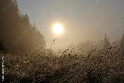 Foggy landscape with house in the mountains at the summer mornin