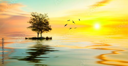 Fotobehang Zwavel geel Beautiful landscape