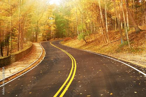 jesieni-scena-z-droga-w-lesie