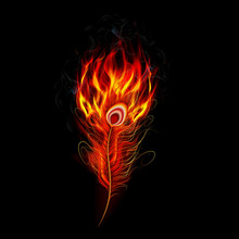 Fire Burning Peacock Feather W...