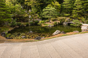 Fototapeta Japoński zen garden with pond and pruned trees