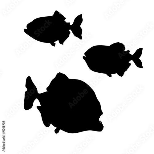 Valokuva  Piranha fish vector silhouettes.