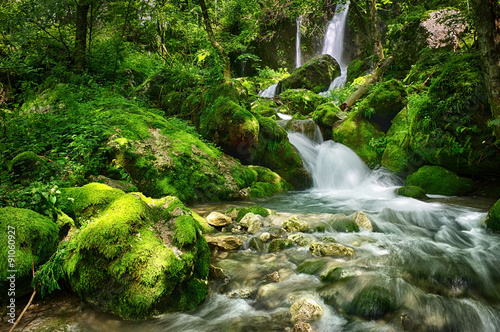Canvas Prints Forest river Waterfall in a forest