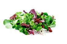 Mixed Salad Leaves  Frisee, Radicchio And Lamb's Lettuce. Isolated On White Background