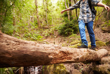 Boy Balancing On A Fallen Tree To Cross A Stream In A Forest