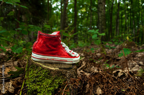 Fotografie, Obraz  But in the forest
