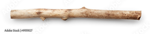 Fotomural  Tree stick