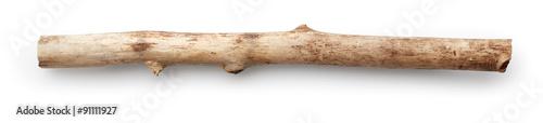Fotografia  Tree stick
