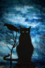 Black Cat And Crows
