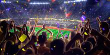 Fans On Stadium Game Panorama ...