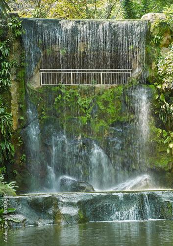 Wall Murals Ostrich Artificial waterfall