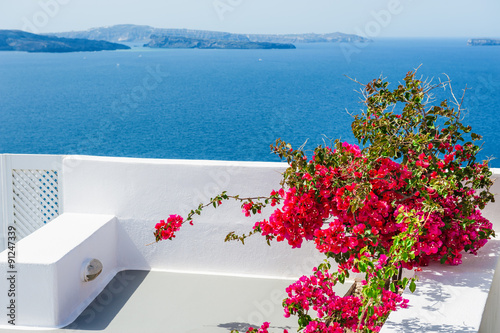Papiers peints Santorini Terrace with red flowers. Santorini island, Greece.