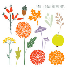 Set Of Hand Drawn Autumn Fall Floral Graphic Elements, Isolated Vectors