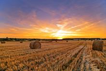Field Of Freshly Bales Of Hay In Sunset