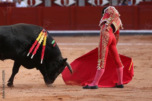 Poster Bullfighting Torero