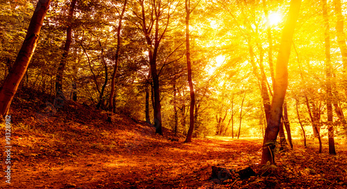 Herbst Landschaft Buy This Stock Photo And Explore Similar Images