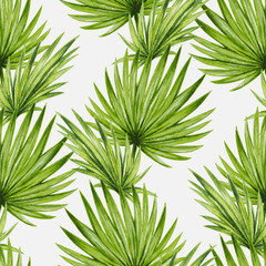 Panel Szklany Natura Watercolor tropical palm leaves seamless pattern. Vector illustration.