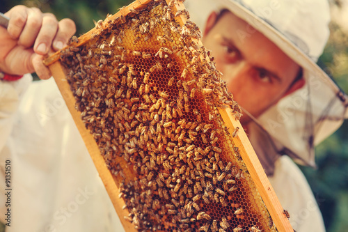 Spoed Foto op Canvas Bee Beekeeper collecting honey