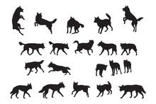 Australian Dingo Silhouettes C...