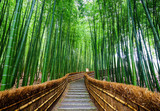 Fototapeta Bamboo - Path to bamboo forest, Arashiyama, Kyoto, Japan
