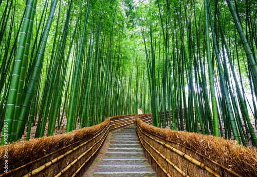Poster Bamboe Path to bamboo forest, Arashiyama, Kyoto, Japan