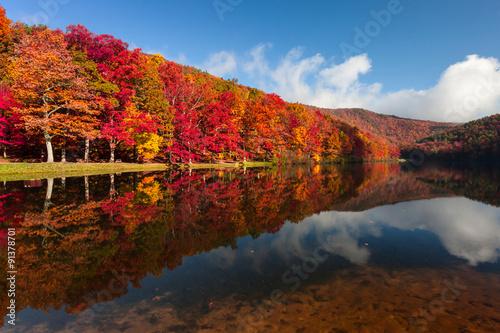 Fototapeta Sherando Lake, Virginia