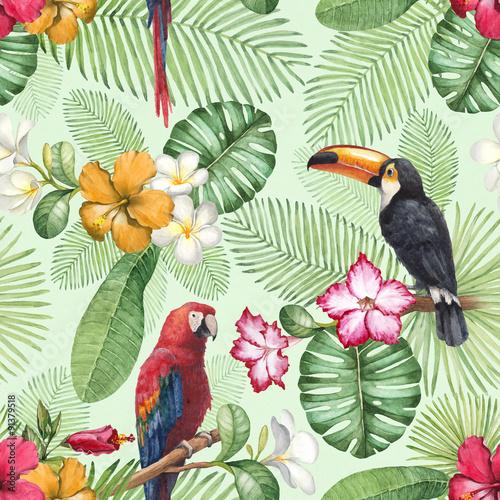 akwarela-tukan-i-papuga-wzor
