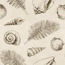 Seamless Pattern With Drawings Of Sea Shells And Palm Leaves