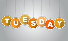 Orange Tag Tuesday