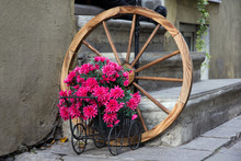 Flowered Wagon With Antique Old Wheel
