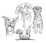 Sketch of dogs. Vector illustration.