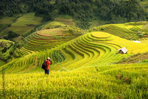 Garden Poster Rice fields photographer take a picture of beautiful rice terrace view