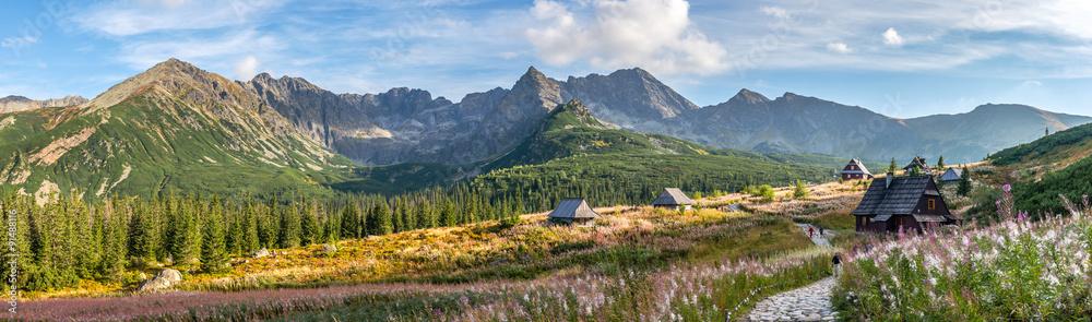 Fototapeta Hala Gasienicowa in Tatra Mountains - panorama