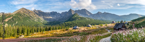 Fototapeta Hala Gasienicowa in Tatra Mountains - panorama obraz
