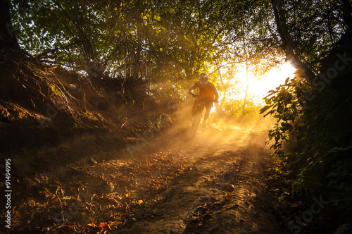 Carta da parati Downhill mountain biker at sunset