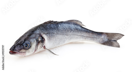 Valokuvatapetti Seabass isolated on white background with clipping path