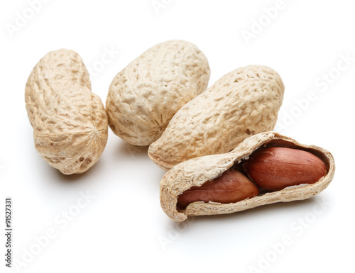 peanut pod or arachis isolated on white background cutout Canvas Print