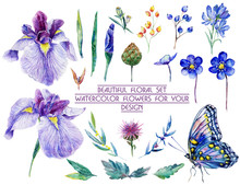 Set Of Different Blue, Lilac Flowers For Design. Watercolor Irises, Cornflower, Wildflowers, Leaves, Berry, Butterfly. Set Of Floral Elements To Create Compositions.