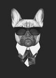 Fototapeta Dogs - Portrait of French Bulldog in suit. Hand drawn illustration.