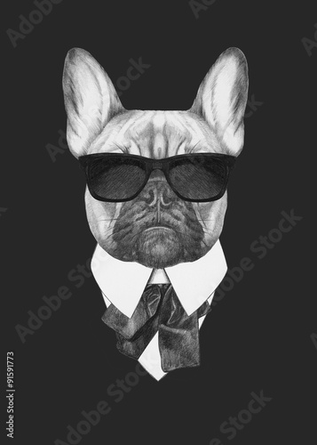 Fotografía  Portrait of French Bulldog in suit. Hand drawn illustration.