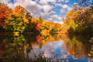 Jesienne kolory drzew odbite w lustrze wody