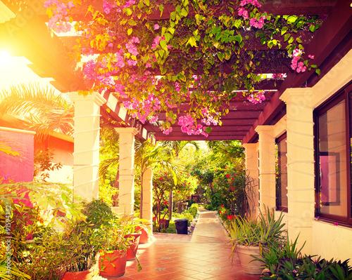 La pose en embrasure Grenat Beautiful vintage landscaped terrace of a house with flowers