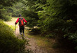 canvas print picture - man with backpack and poles training ultra trail in the mountains