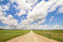 Landscape Of An Alberta Prairie Dirt Road Leading Off Into The Distance.